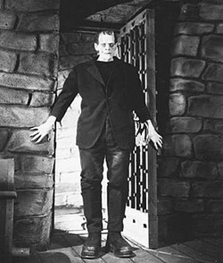an analysis of the realism of the story in the novel frankenstein by mary shelley Frankenstein mary shelley buy table of contents all subjects frankenstein at a glance book summary about frankenstein frankenstein as a gothic novel.